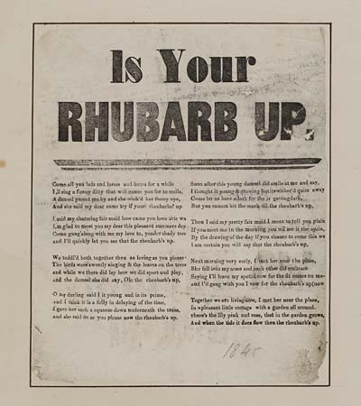 (29) Is your rhubarb up