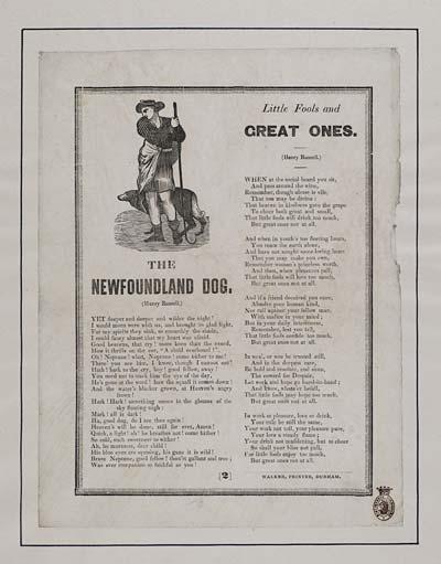 (25) Newfoundland dog