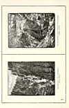 Thumbnail of file (12) Page XVII