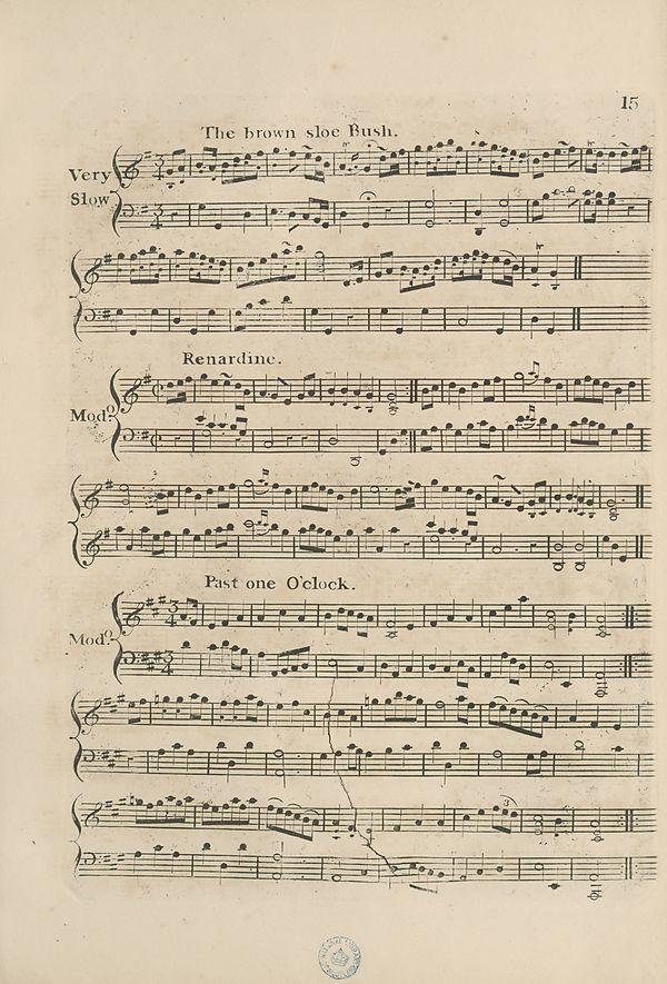 (25) Page 15 - Brown shoe Bush -- Renardine -- Past one O' clock