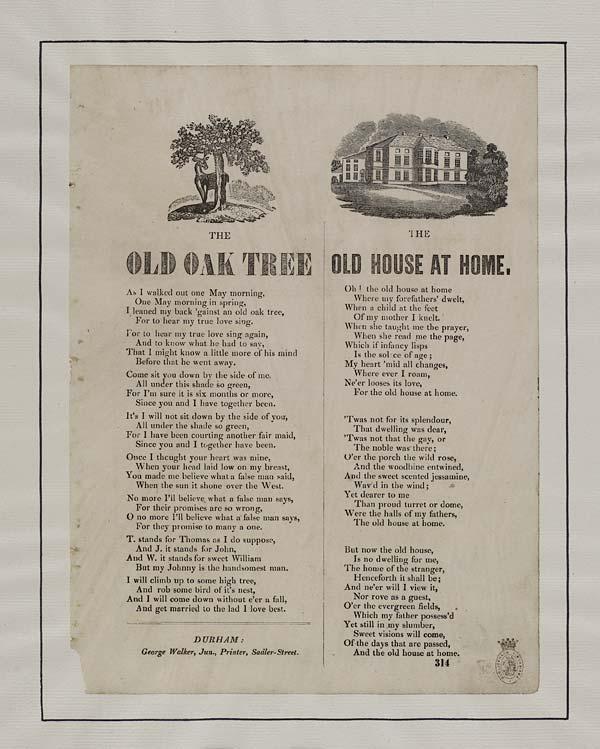 (9) Old oak tree