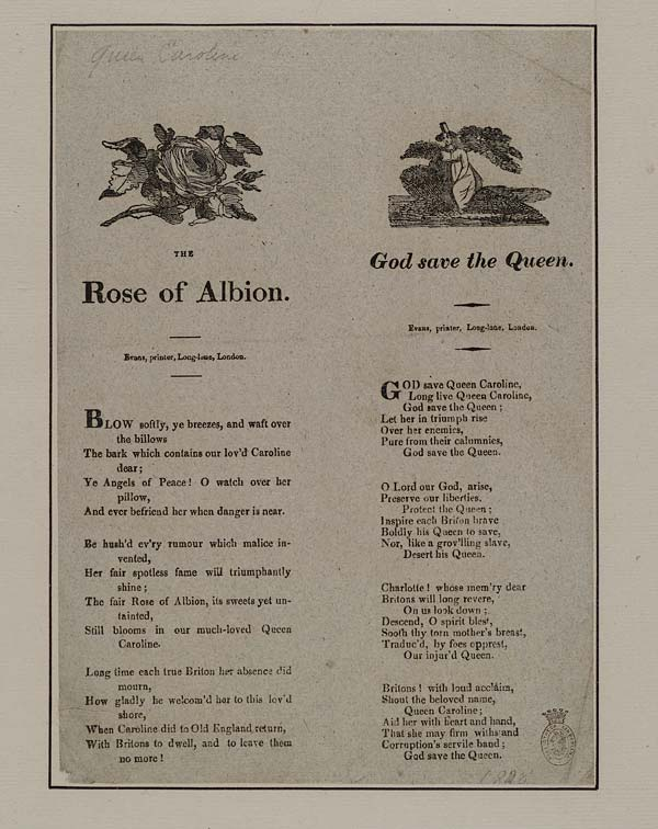 (22) Rose of Albion