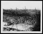 C.1046German barbed wire and shell holes - after rain